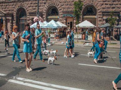 Парад джек-рассел в Києві