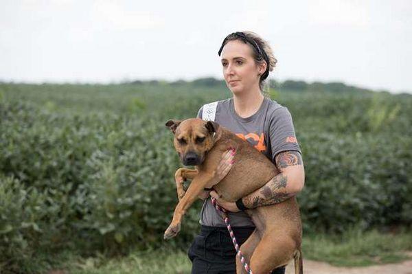 45 собак були знайдені в Канзасі і врятовані співробітниками ASPCA