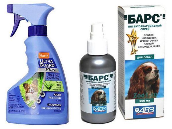 6 типів кращих засобів від бліх для собак