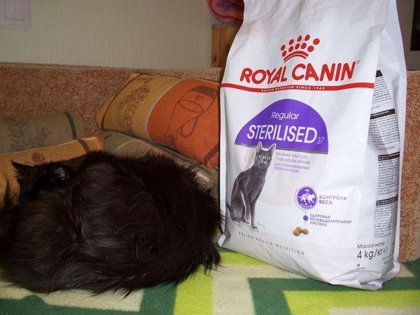 Royal Canin для дорослих стерилізованих кішок і котів