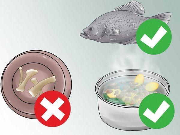 У холістік кормах використовують продукти, придатні для харчування людини