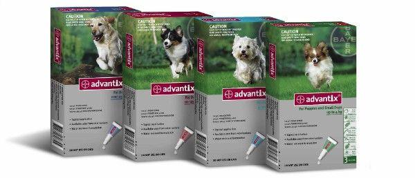Advantix pre psy - hodnotenie liekov