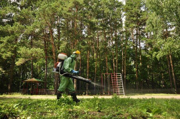 Akaricídne ošetrenie proti kliešťom: výhody, pravidlá správania a bezpečnosť metódy