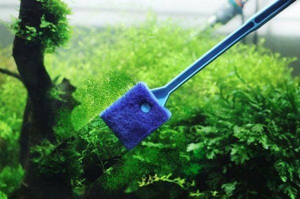 чистка акваріума