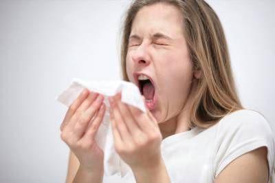 Alergia na psy: typy, príznaky, liečba