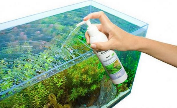 Kŕmenie rastlín akvária