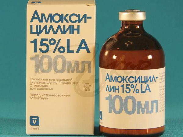 Амоксицилін 100 мл
