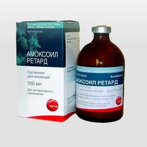 Amoxoil retard a amoxicilín pre mačky: aplikácia