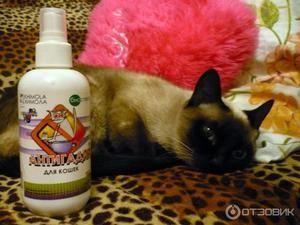 Антігадін для кішок