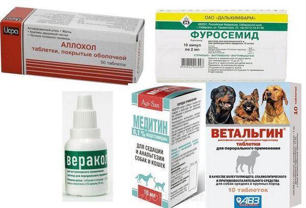 Препарати для лікування асциту у собак