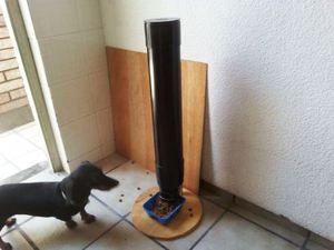 Зручна годівниця для собаки - автомат
