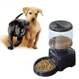 Автогодівниці для собаки - як вибрати