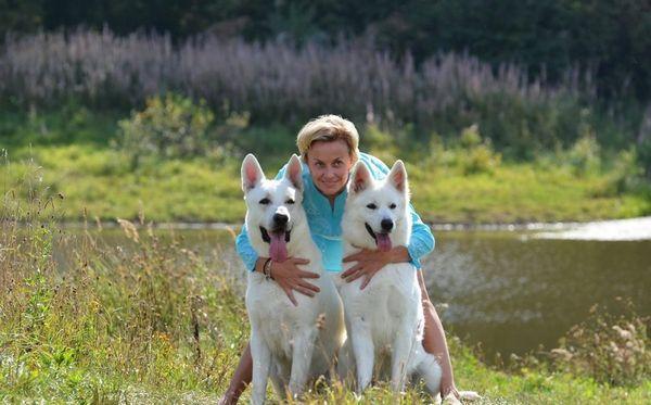 Собаки з господарем