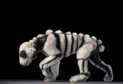 Божевільна собача стрижка у вигляді скелета