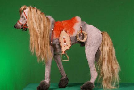 Божевільна стрижка собаки під конячку