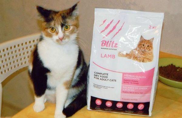 Blitz - krmivo pre mačky