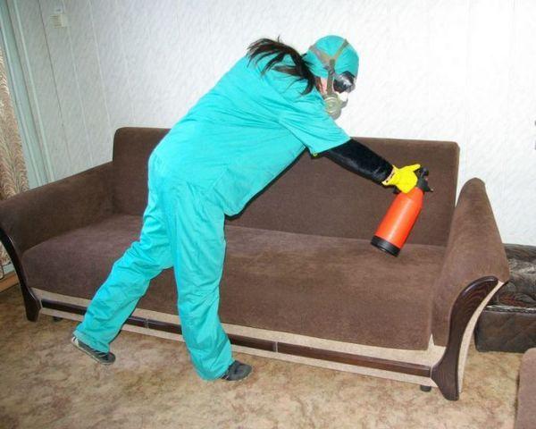 Обробляють приміщення від комах-шкідників