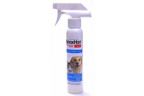 БлохНет для собак