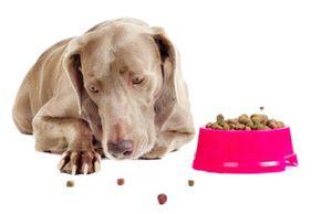 зниження апетиту