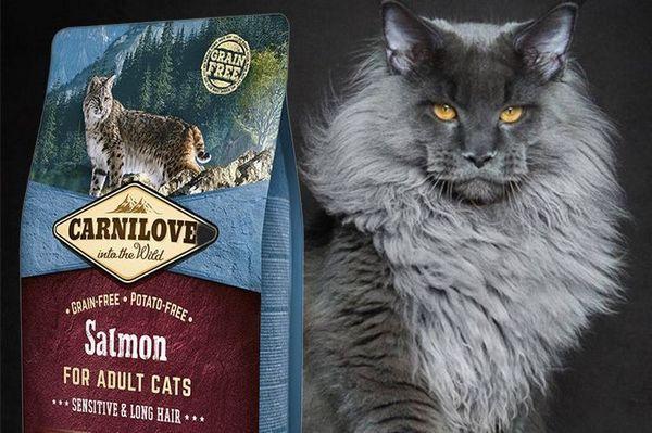 Carnilove - корм для кішок