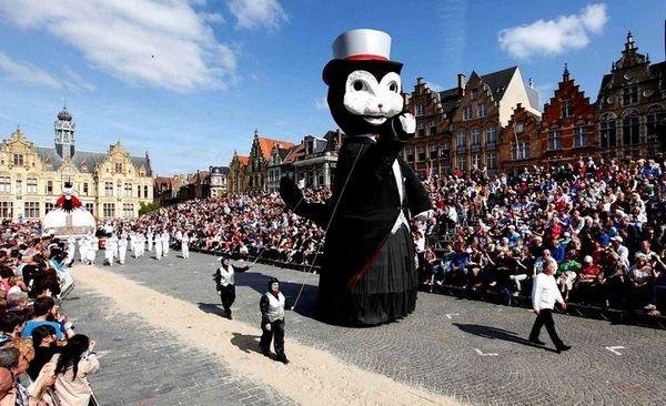 Фестиваль на честь кішок в Бельгії