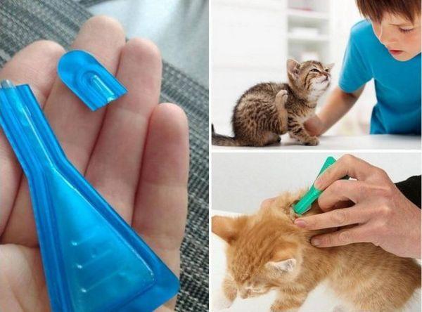 Обробка котів краплями
