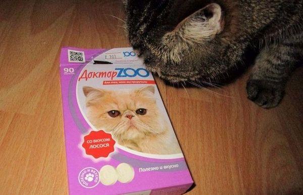 Кот ест вітаміни Доктор Зоо