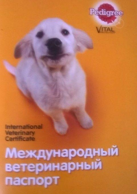 Документи, издадени от ветеринарната клиника и не само