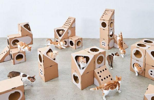 Картонні будиночки для кішок