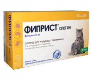 Fiprist pre mačky: eliminácia kliešťov, vší, bĺch a iných parazitov u mačiek