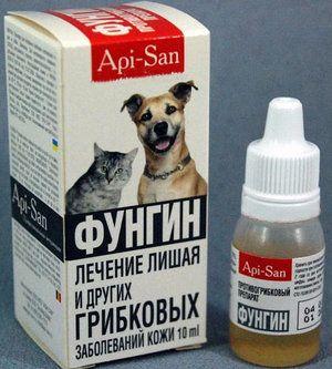 Fungin: ako sa liek používa na liečbu trichofytózy a mikrospórie u psov a mačiek