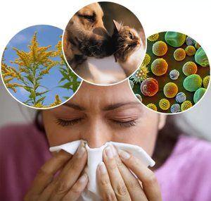 Алергія на рибу