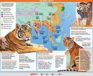 Місця проживання тигрів на Землі