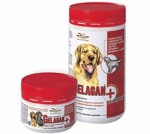 `Гелакан` для собак: опис, склад і застосування
