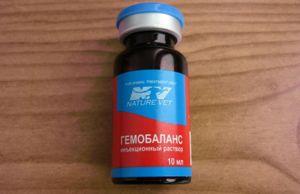 Гемобаланс - препарат з вітамінами для ін`єкцій домашнім улюбленцем