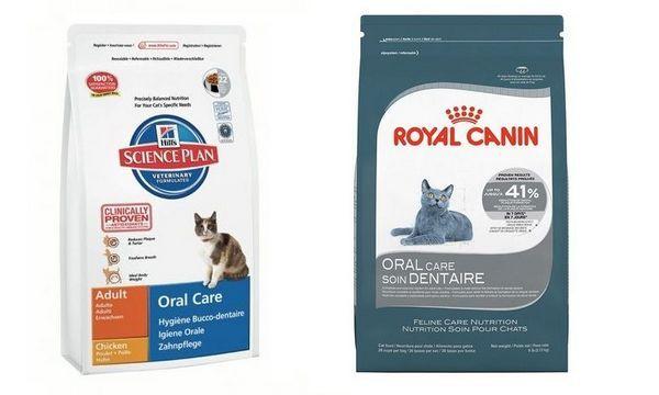 Корм для профілактики хвороб зубів у котів