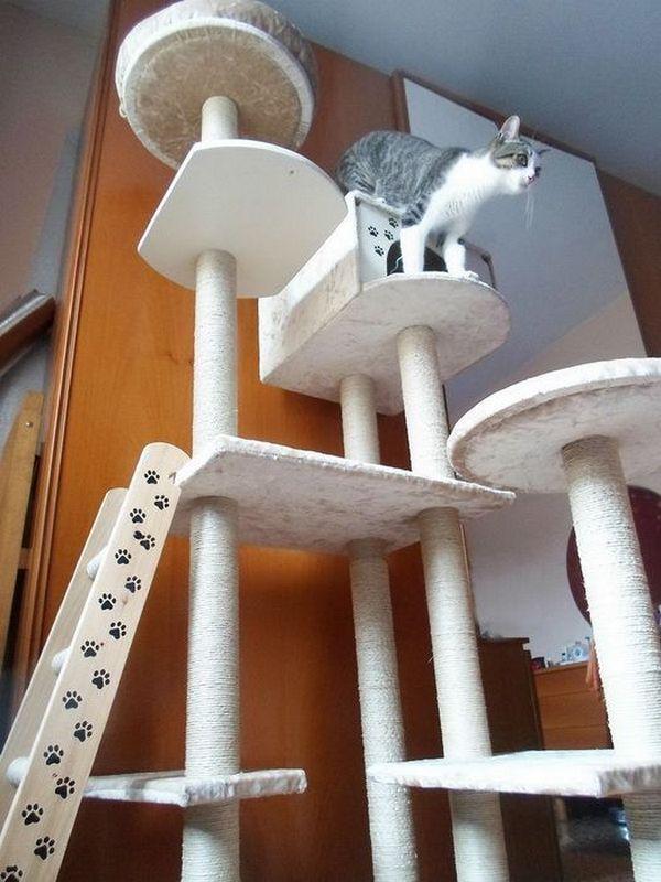 Ігровий комплекс для котів