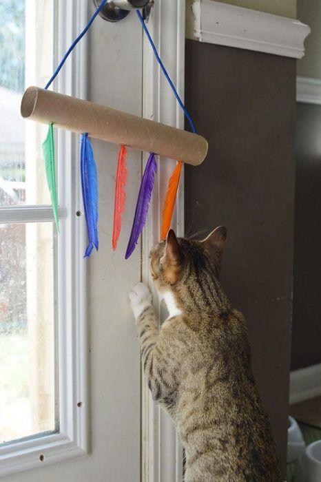 Іграшка для кішки з пір`я