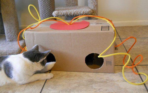 Іграшка для кішки з коробки