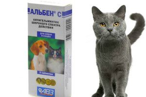 Інструкція по застосування препарату Альбен для собак і кішок