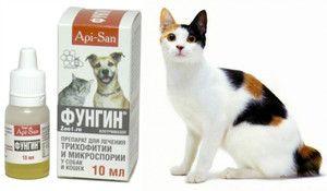 Особливості застосування лікарського препарату фунгин для кішок і собак