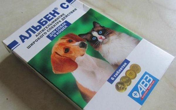 Вартість упаковки з 6 таблеток близько 50 рублів