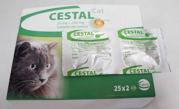 Інструкція по застосуванню препарату цестал для кішок