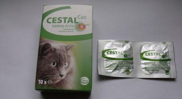 Цестал призначають індивідуально пропорційна масі тіла кішки