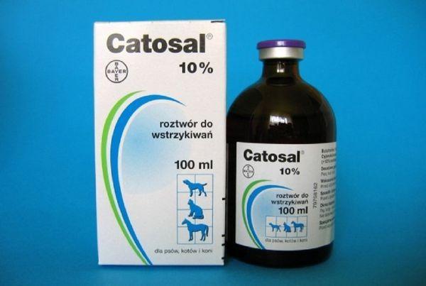 Інструкція по застосуванню препарату катозал для кішок і собак