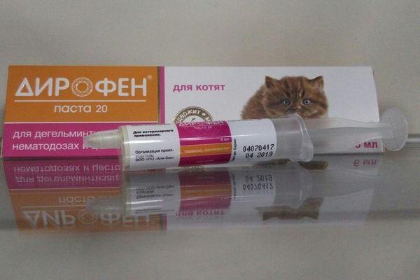 Кошенятам і цуценятам не варто давати таблетки, передбачені для дорослих тварин