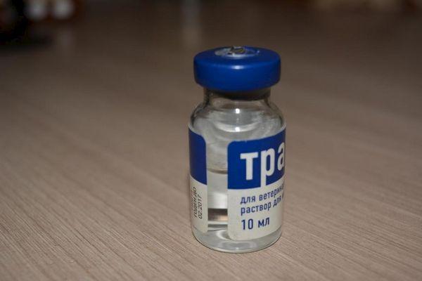Травматін в закритій пляшці