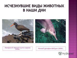 Які тварини вже вимірлі