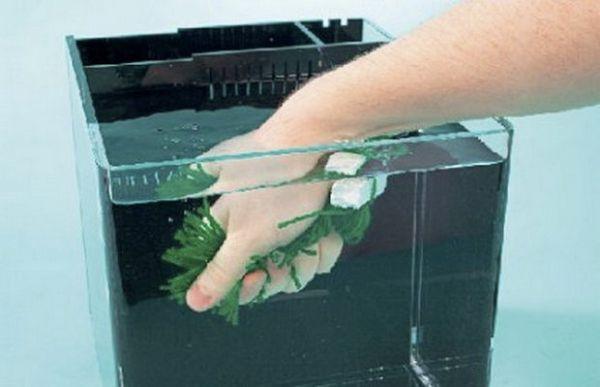 Розміщуємо штучне рослина в акваріум