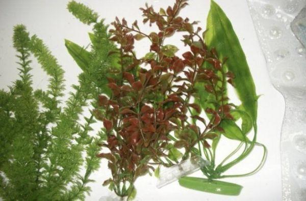 Штучні рослини в акваріумі